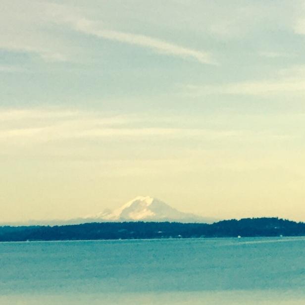 Mt. Rainier has been amazing this summer