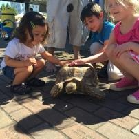 Jaren, Miri and Yael Jacobs make a new friend
